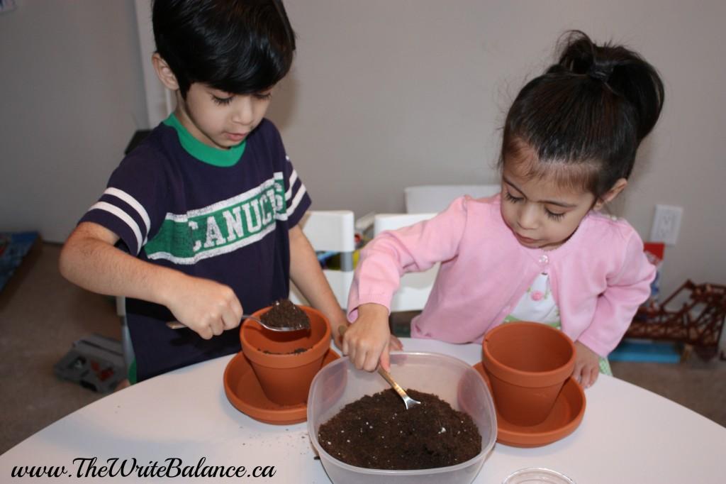 add soil to planter