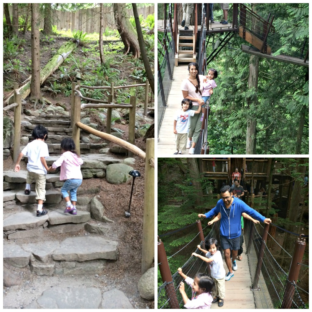cap treetop adventure
