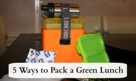 Green Lunch Box feature