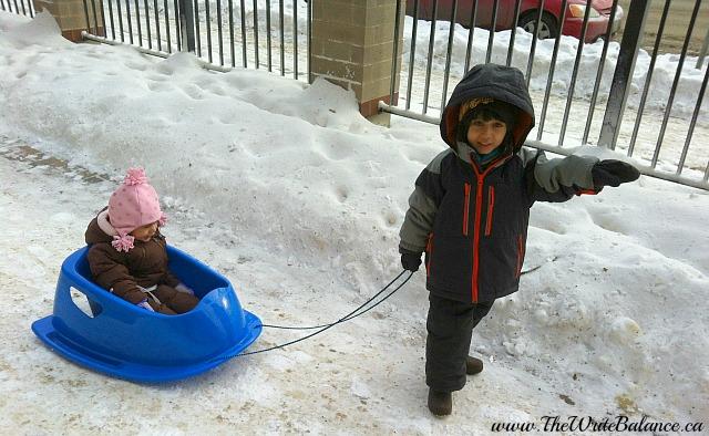 3 things winnipeg sled