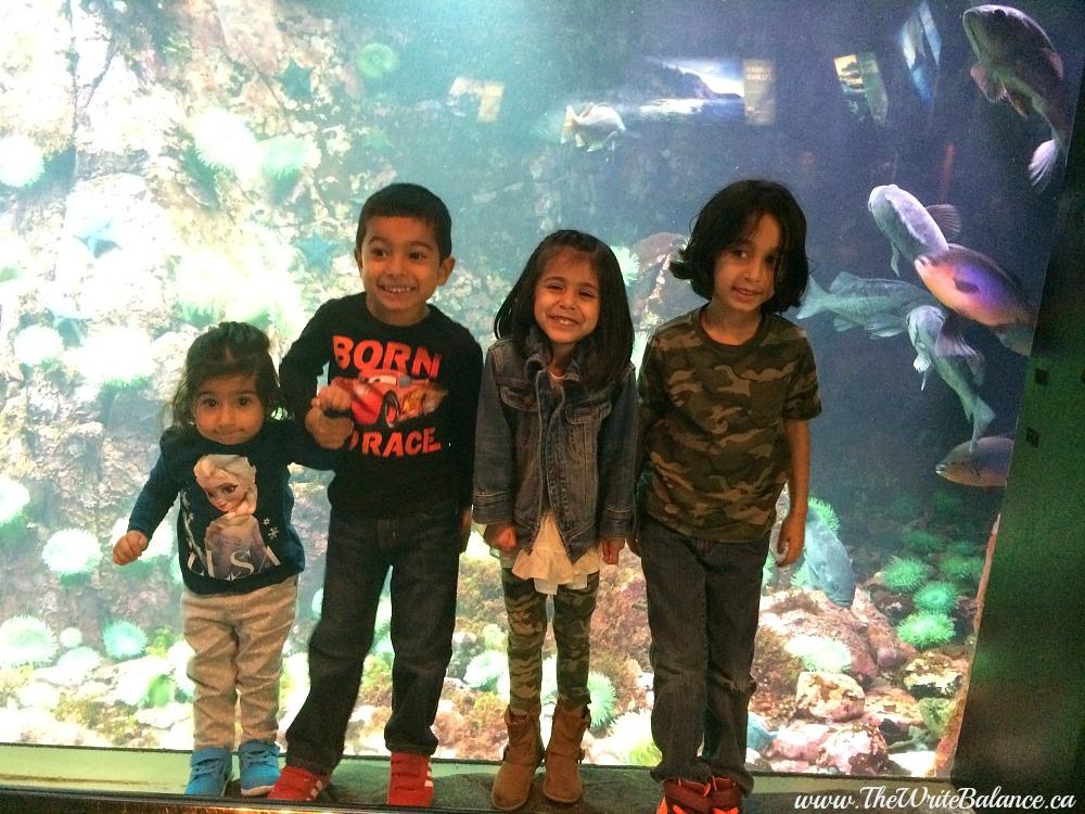 cousins at the aquarium