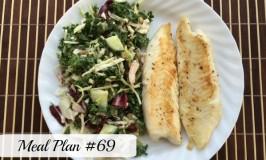 Meal Plan #69