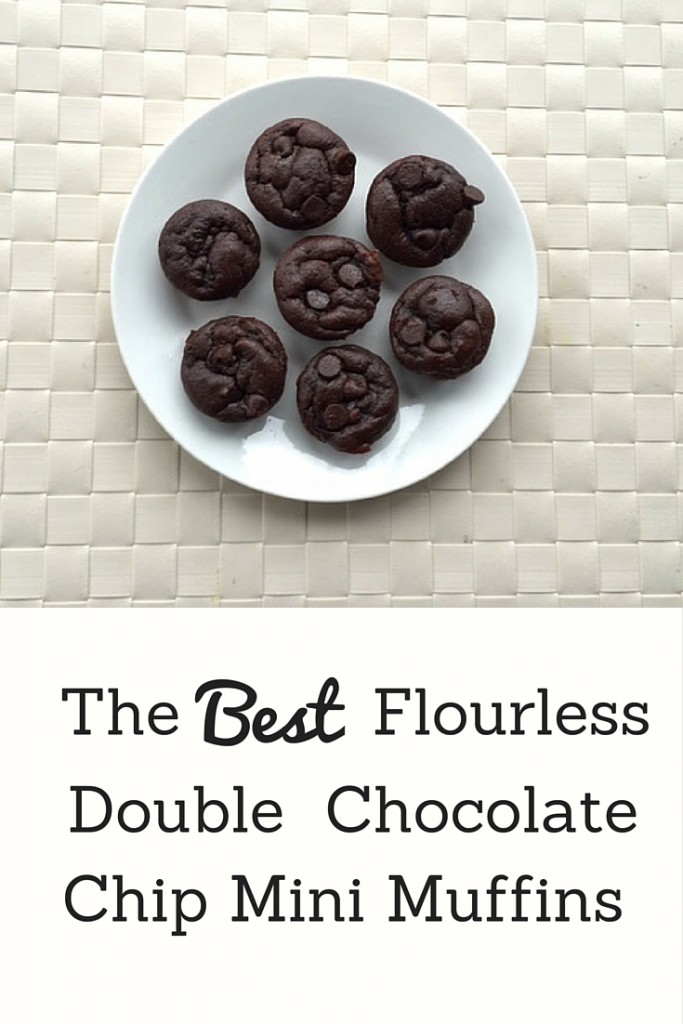Best Flourless Double Chocolate Chip Muffins