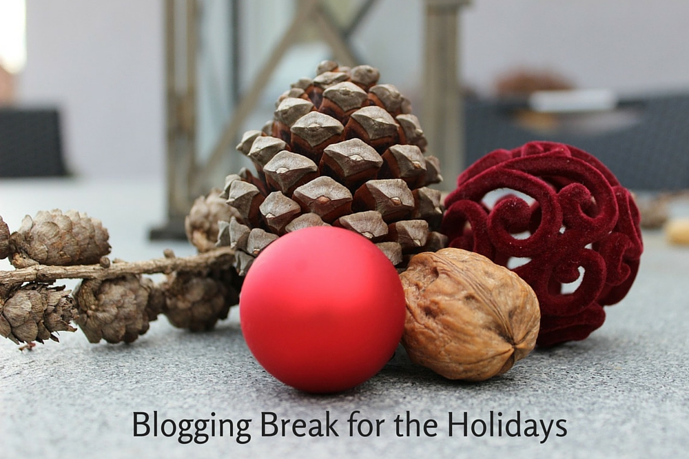 Blogging Break for the Holidays