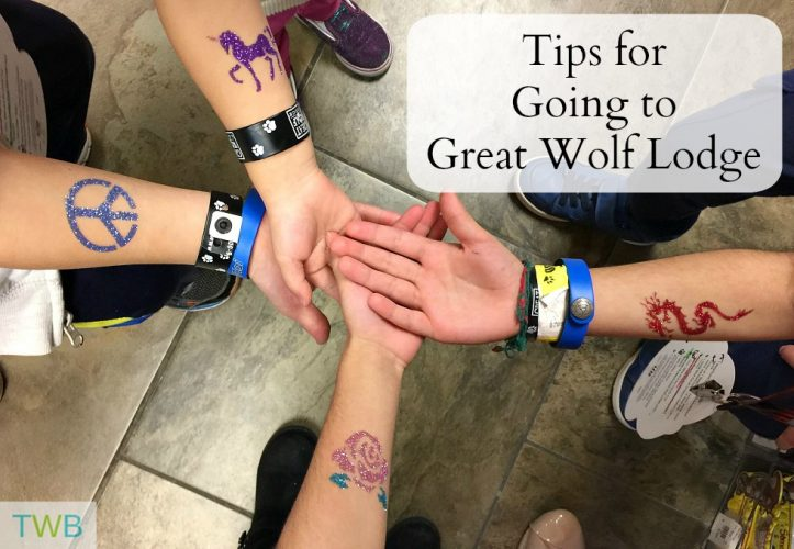 Great Wolf Lodge - feature