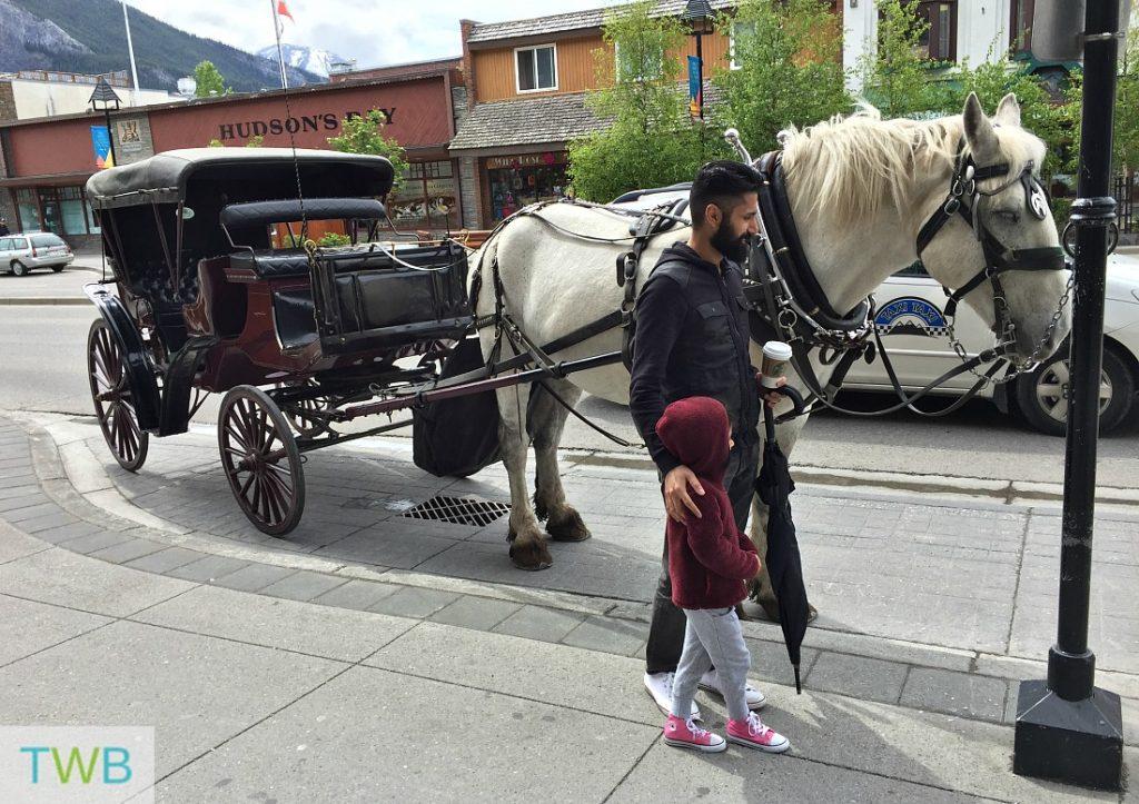 Banff Horse Drawn Carriage Ride